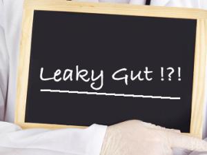 """""""Löcher"""" im Darm? – Das Leaky gut-Syndrom"""